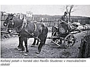 obec33